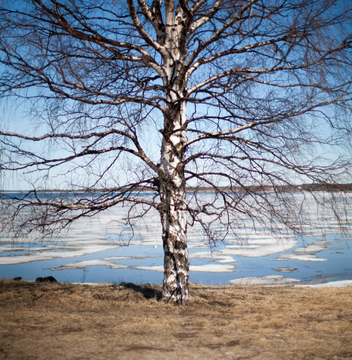 Oulu, Norra Österbotten