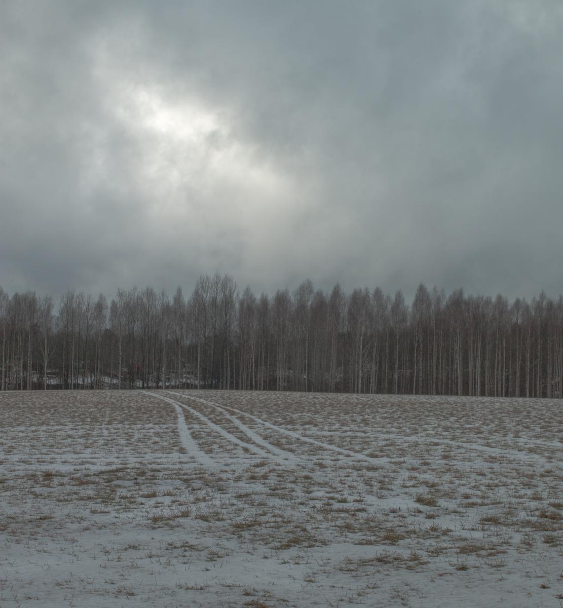 Den stekande vintersolen